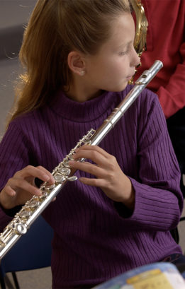 beginner-flute-art's music shop
